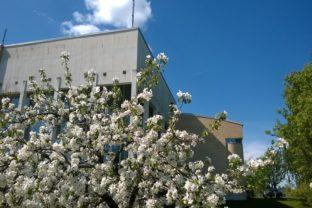 Kunnantalo kevät