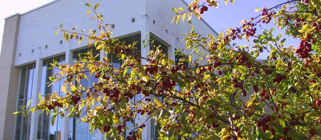 Kunnantalo syksyllä